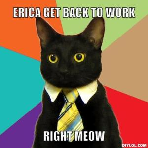 resized_business-cat-meme-generator-erica-get-back-to-work-right-meow-4be252